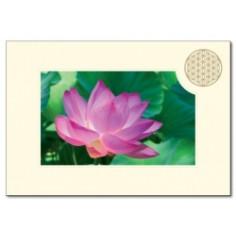 Klappkarte Blume des Lebens Lotusblüte