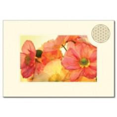 Klappkarte Blume des Lebens Mohnblume orange