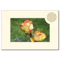 Klappkarte Blume des Lebens Rose