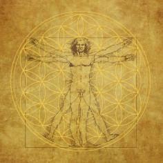 Leinwand-Druck Vitruv Da Vinci