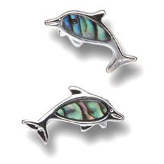 Ohrstecker Delfin Paua-Muschel