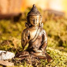 Amoghasiddhi Dhyani Buddha